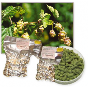 Styrian Goldings Hopfen Pellets 100 g 2016